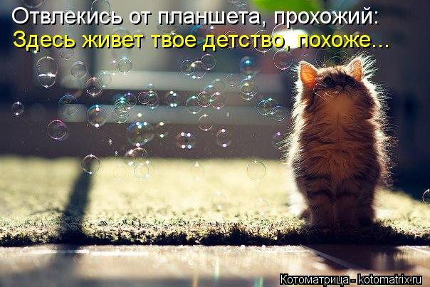 kotomatritsa_r9 (604x403, 54Kb)