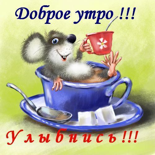 89582889__dobroe_utro_uluybnis.jpg