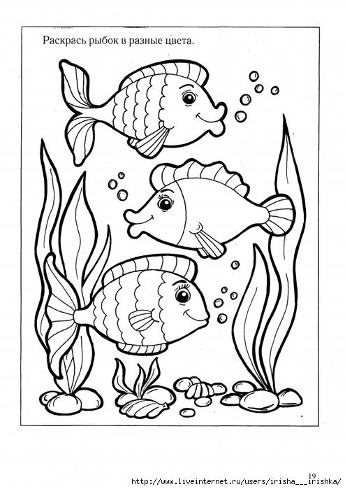 картинки раскраски для детей 2 года