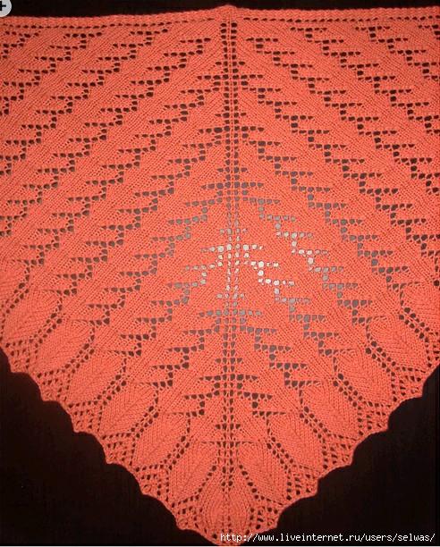 Шаль треугольная ажурная спицами/4683827_20120724_181313 (492x612, 308Kb)