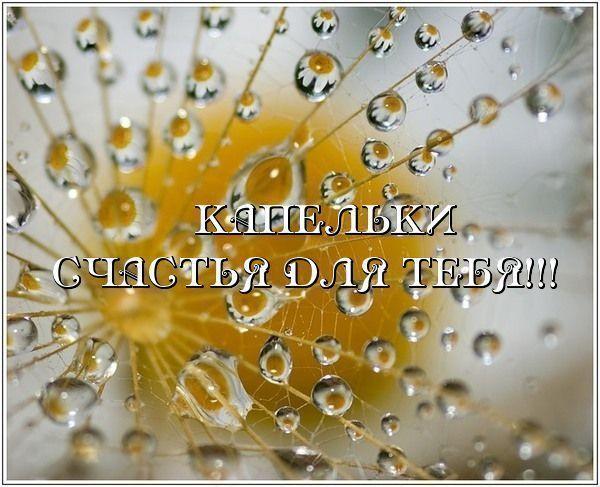 86650322_kapelki_schastya_dlya_tebya (600x487, 57Kb)