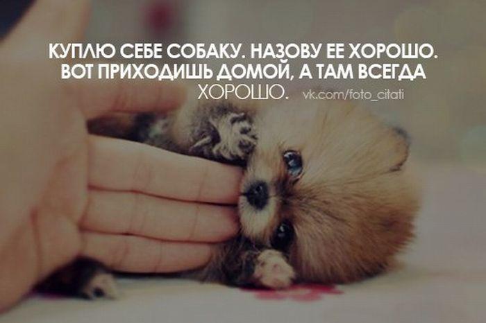 quote_17 (700x466, 33Kb)