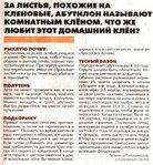 Превью KopilkaSemS1220121 (388x420, 89Kb)