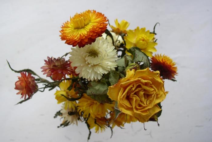 Красивые букеты из сухоцветов