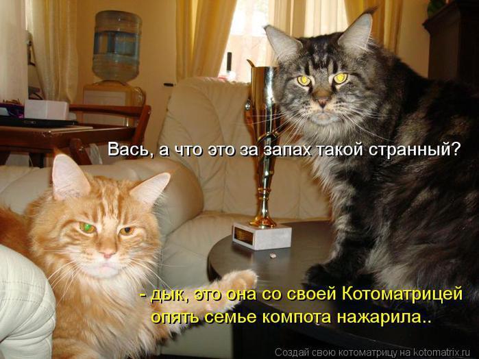 kotomatritsa_GG (700x524, 62Kb)