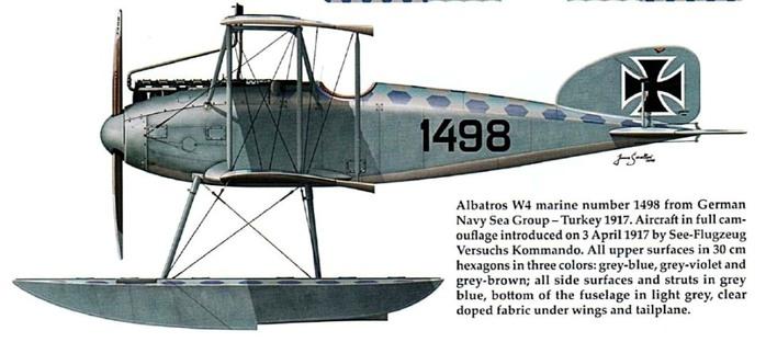 альбатрос w4 (700x312, 58Kb)