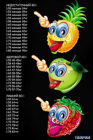 з (320x480, 40Kb)