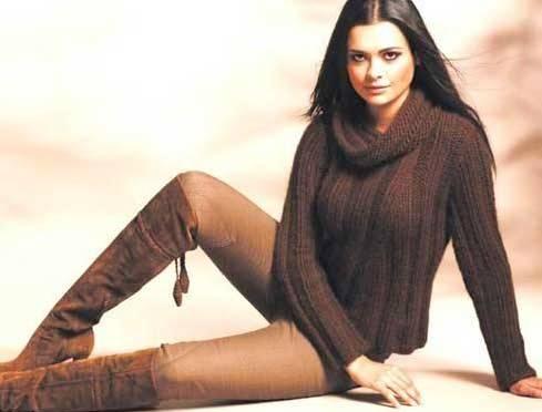 коричневый пуловер (489x372, 19Kb)