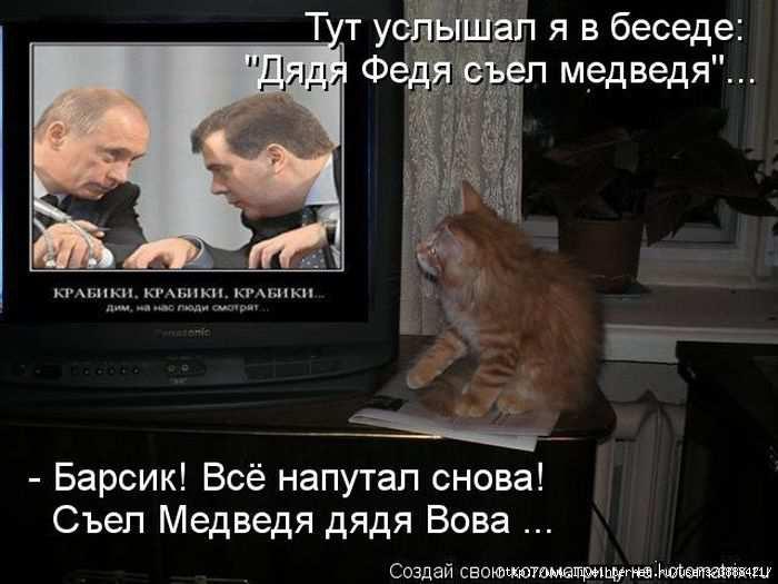 1342938349_kotomatritsa_06 (700x525, 128Kb)