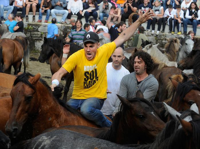 фестиваль клеймения лошадей испания 2 (700x520, 140Kb)