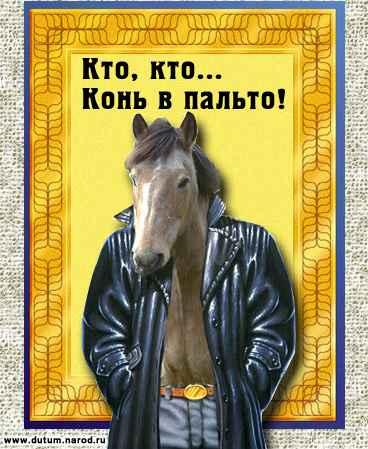 Конь в пальто /