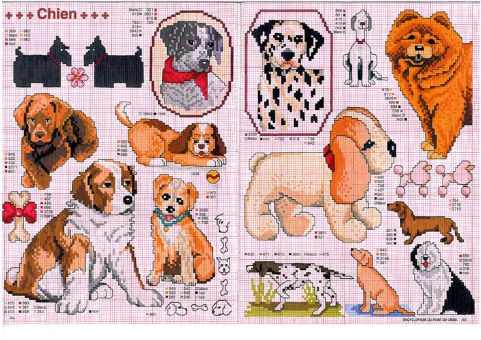 собачки (700x495, 614Kb)
