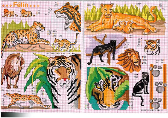 тигры (700x495, 641Kb)