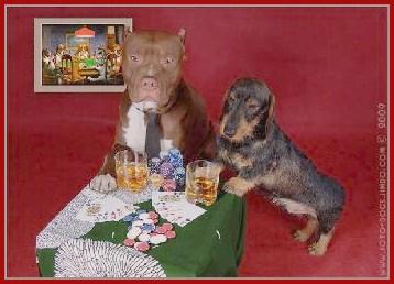 Покер а луганске