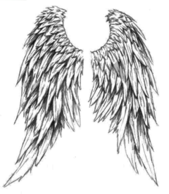Кисти для фотошрпа крылья