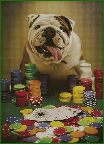 Базовые основные навыки в игре покер