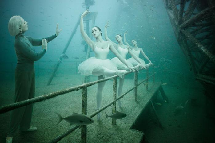 подводная фотография дайвинг 5 (700x466, 207Kb)
