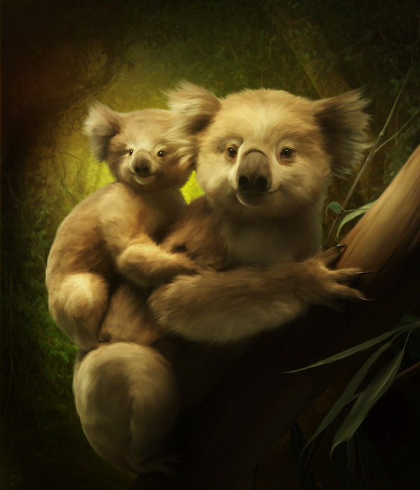 2795685_koalas_by_elenadudinad4gg56l (600x700, 59Kb)