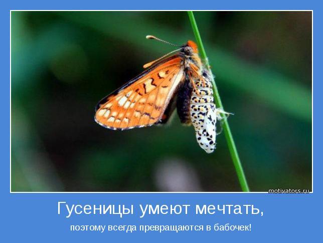 motivator-38701 (644x485, 35Kb)