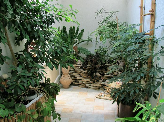 Зимнего сада с элементами декора
