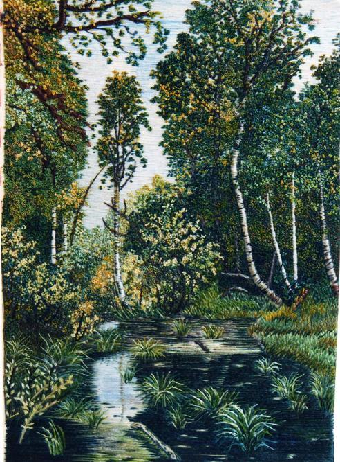 Заросший пруд на опушке леса (492x667, 309Kb)