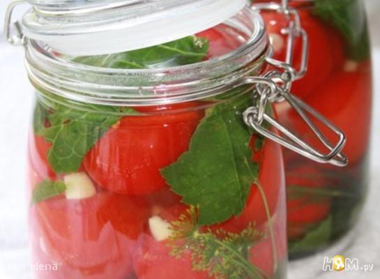 marinovannye_pomidory_s_medom_i_chesnokom (545x400, 28Kb)