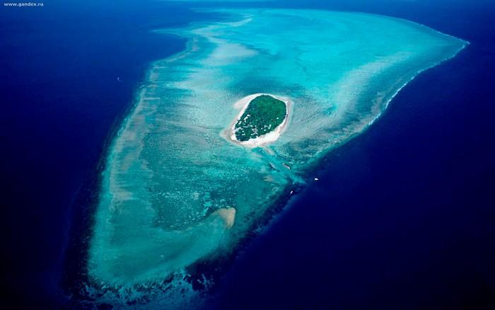 Лучшие достопримечательности Австралии - Большой Барьерный Риф 1 (700x438, 54Kb)
