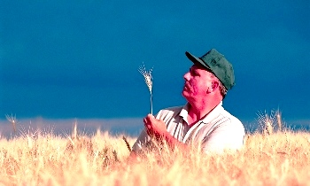 ГМО-продукты (350x210, 38Kb)