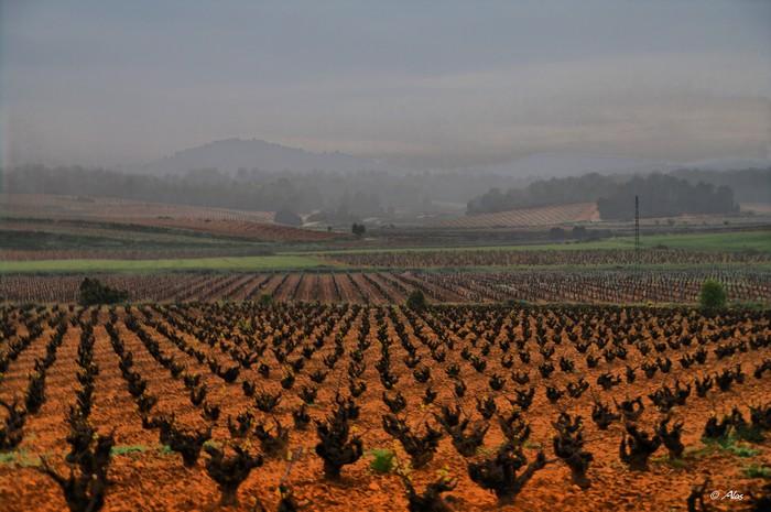 Живописные фото Испании 19 (700x465, 95Kb)
