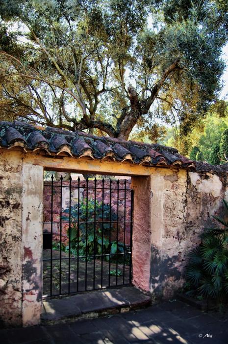 Живописные фото Испании 27 (465x700, 516Kb)