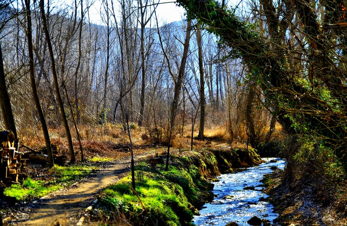 Живописные фото Испании 61 (700x456, 190Kb)
