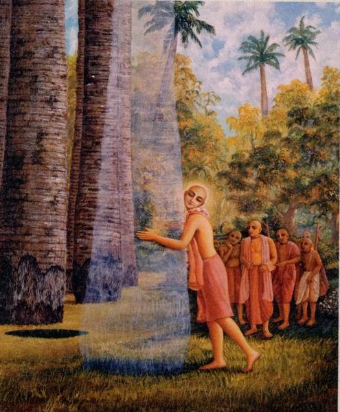 Освобождение пальм (495x600, 67Kb)