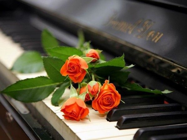74957170_rozuy_na_klaviature (600x450, 51Kb)