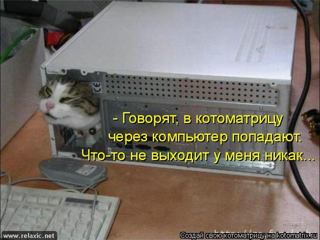 kotomatrix_0221 (640x480, 55Kb)