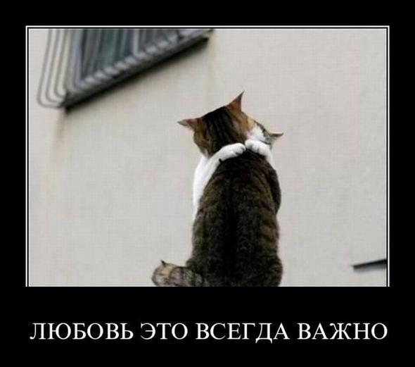 1301978741_demotivatory_124 (590x521, 43Kb)