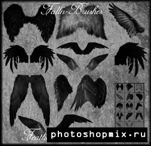 3354683_1217959386_feathered_a_w_brushes (300x291, 30Kb)