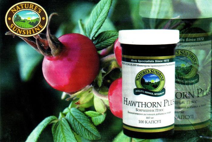 hawthorn-plus-foto (700x469, 118Kb)