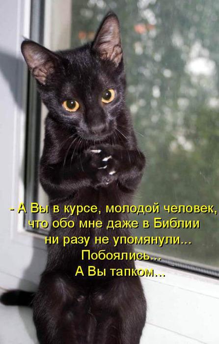 4326608_YS00NGRhL (446x700, 101Kb)