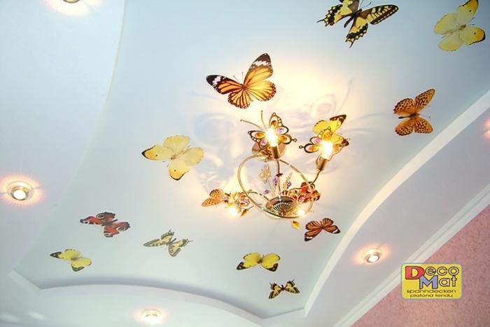 бабочки (700x467, 84Kb)