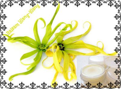 ylang-ylang-flowert (400x292, 40Kb)