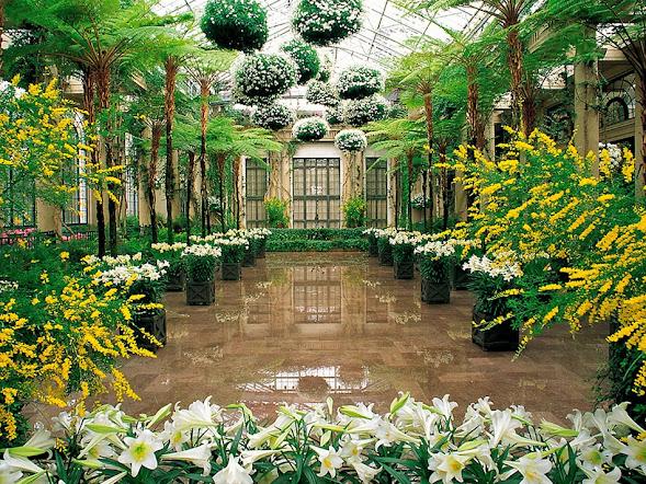 0_7f608_c997d7f3_XXL.jpg сады Дюпона в Пенсильвании (589x442, 224Kb)