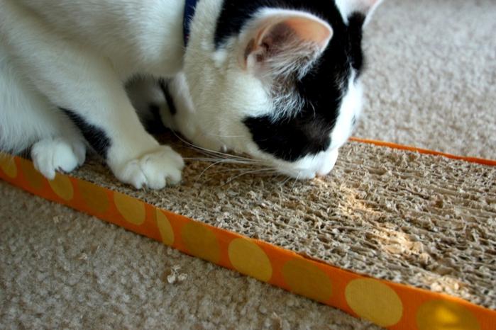 Сделать когтеточку для кошки своими руками с