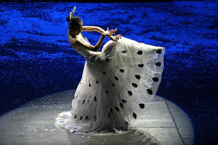 Peacock-Dance (1) (700x466, 397Kb)