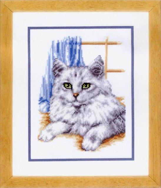 Кошка у окошка.