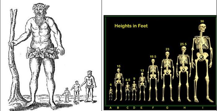 Нефилимы – гиганты или гибриды? Обсуждение на