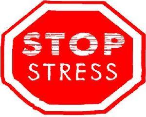 10-produktov-protiv-stressa (300x240, 16Kb)