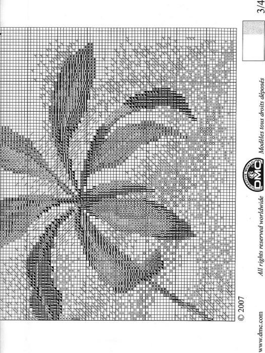 95426-c4a93-29361191-m750x740 (526x700, 186Kb)