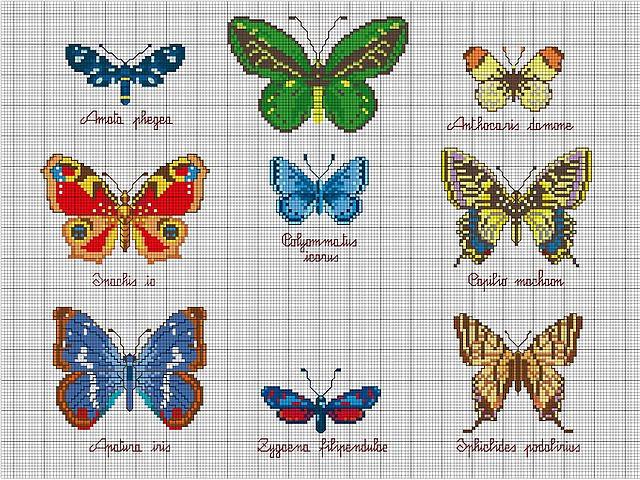 Схема бесплатно бабочки вышивка