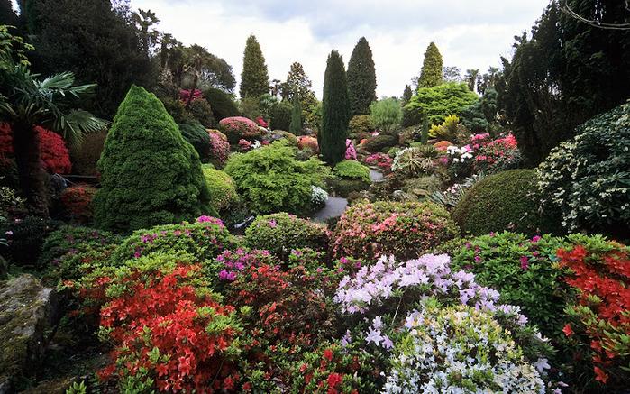 Leonardslee Gardens (Леонардсли – Гарденз) 03 (700x437, 221Kb)