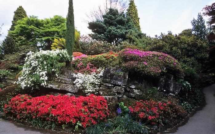 Leonardslee Gardens (Леонардсли – Гарденз) 06.jpgСад Леонардсли, Англия (700x437, 226Kb)